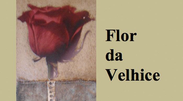 Scaled_flor_da_velhice