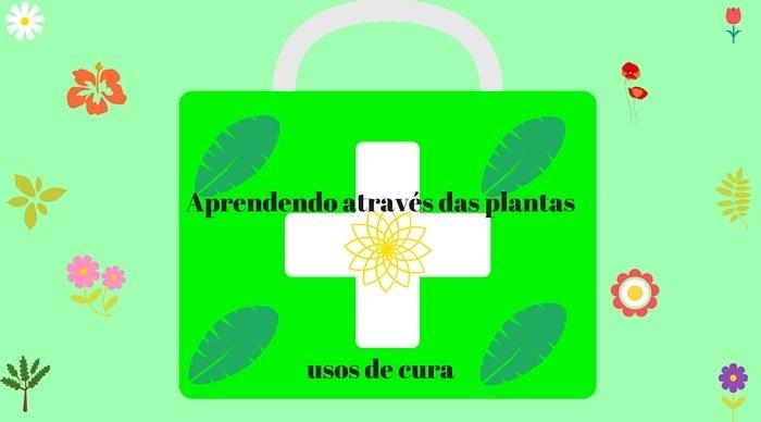 Scaled_aprendendo_atrave_s_das_plantas