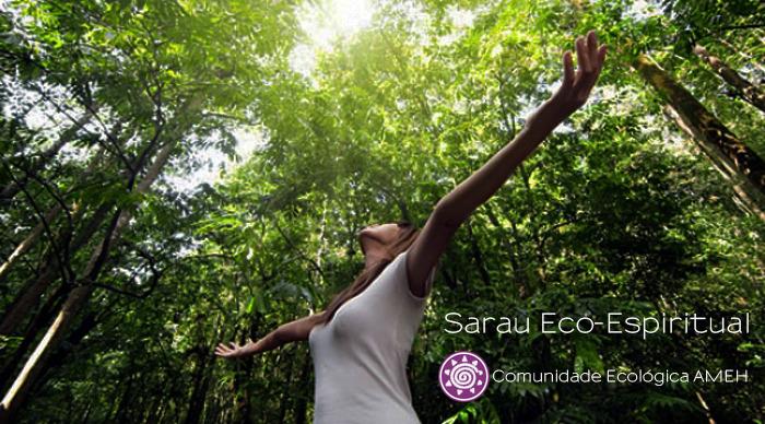 Scaled_sarau_3