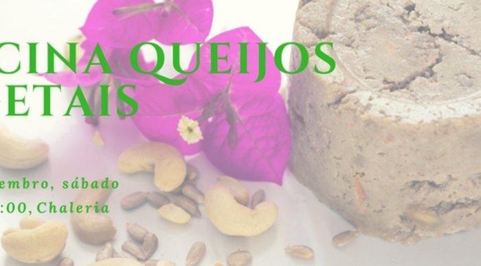 Scaled_queijos_vegetais