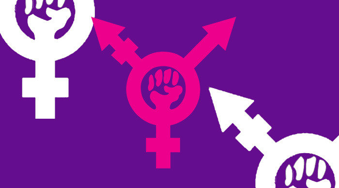 Scaled_transfeminismo_curso