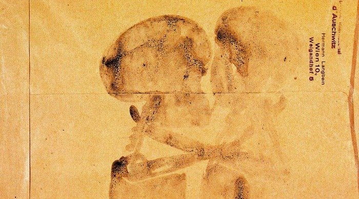 Scaled_beuys_skulls_kissing