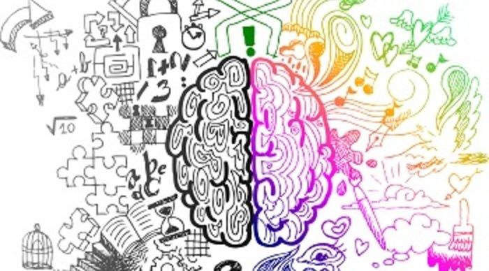Scaled_cerebro_criatividade
